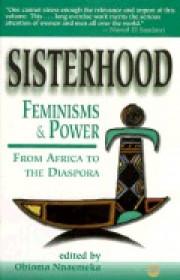 Sisterhood, Feminisms And Power In Africa