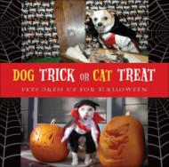 Dog Trick Or Cat Treat