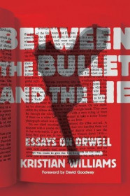 Between The Bullet And The Lie