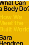 What Can A Body Do?