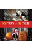 Dog Trick Or Cat Treat