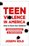 Teen Violence In America