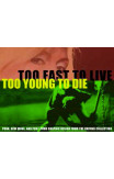 Too Fast To Live, Too Young To Die: Punk And Post-punk Graphics